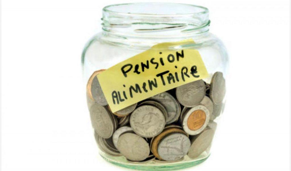 pension-alimenticia-en-el-estado-de-mexico-5