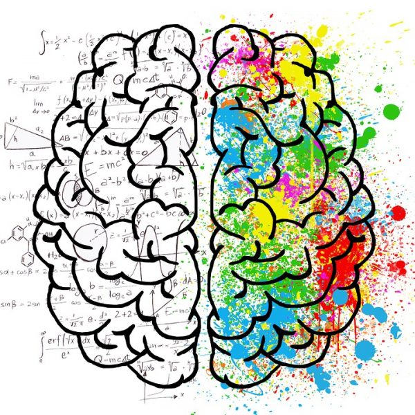 requisitos-para-estudiar-psicologia-en-españa
