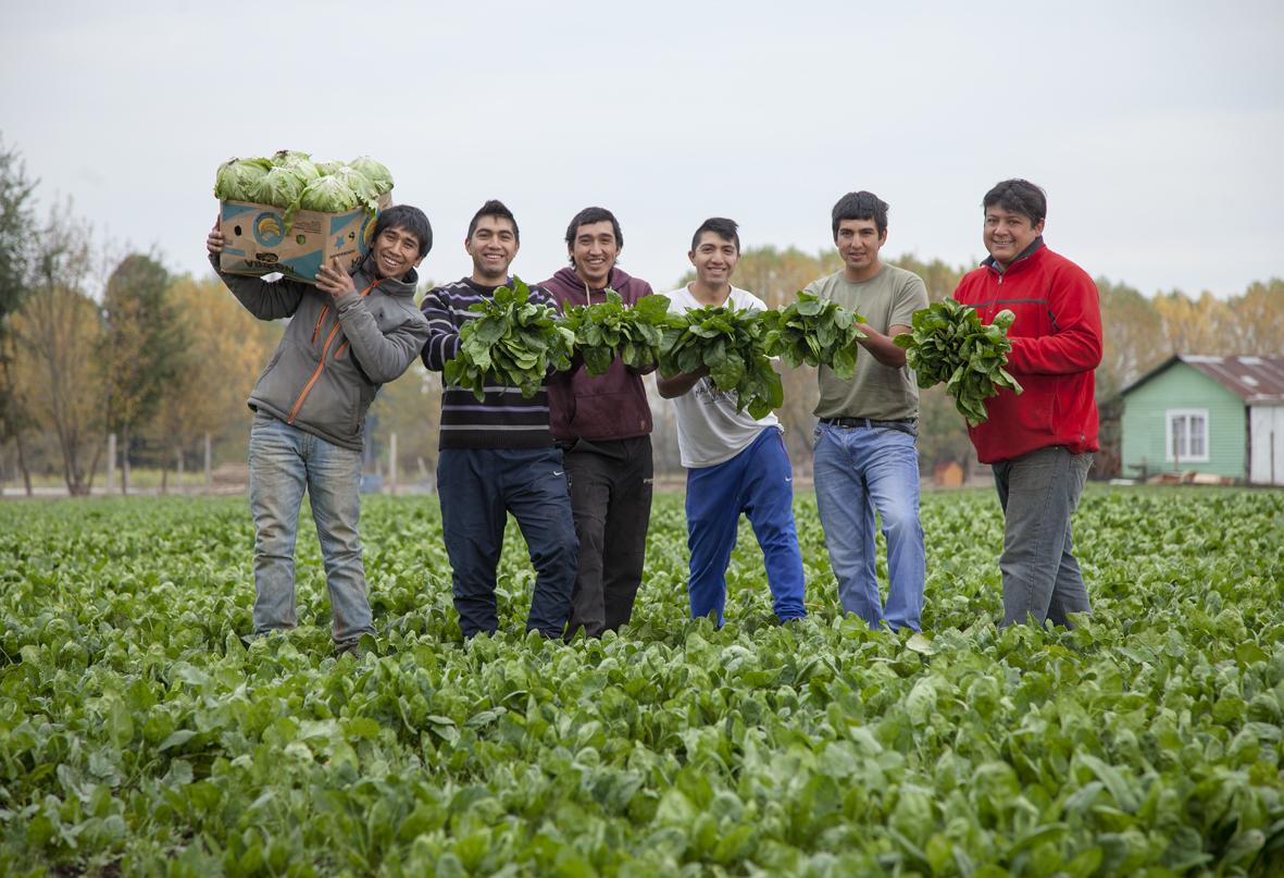 como-formar-una-cooperativa-de-Trabajo-en-Chile-3