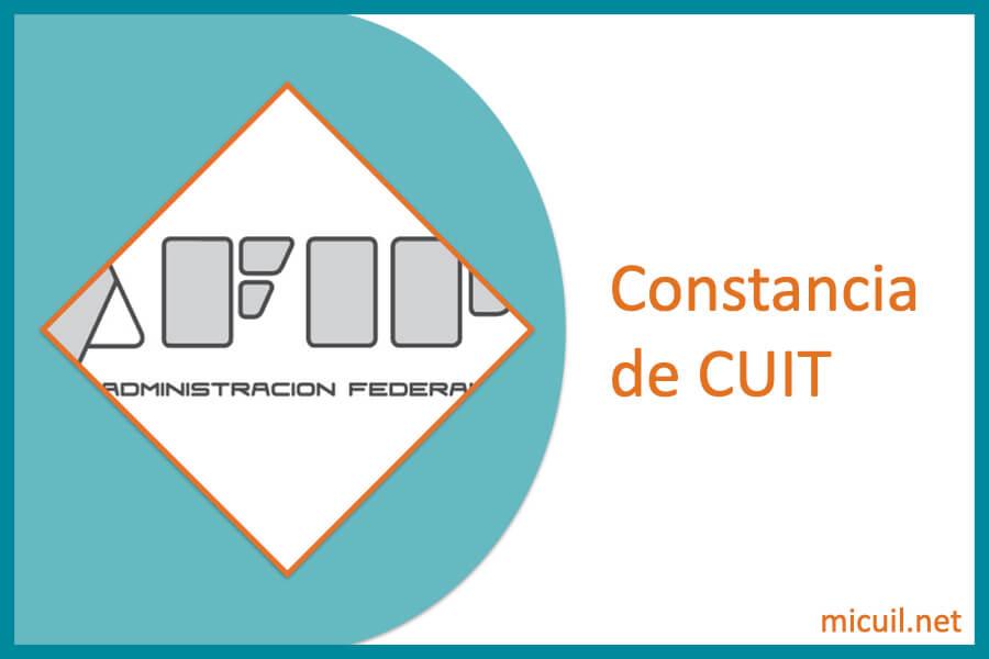 estado-de-cuenta-CUIT-1