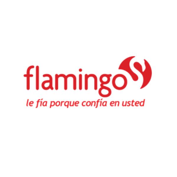 estado-de-cuenta-flamingo-3