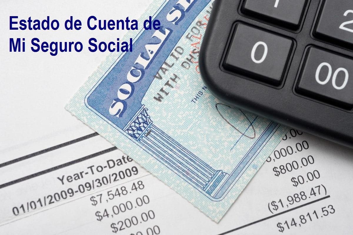estado-de-cuenta-mi-seguro-social-2